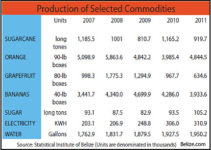 belize-commodities-production-chart