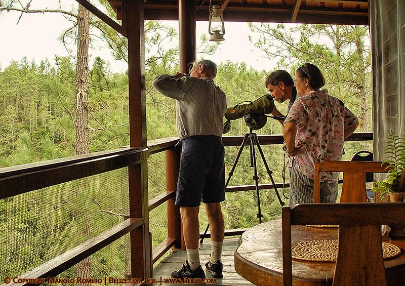 expats birdwatching
