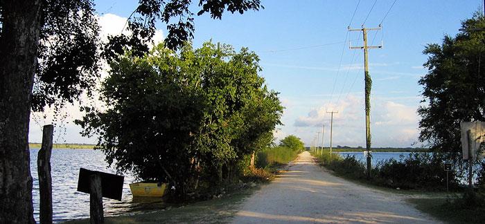 crooked-tree-causeway-700