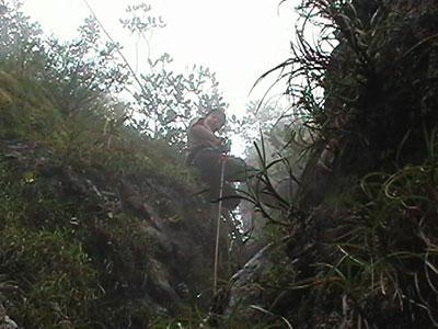 climber victoria peak